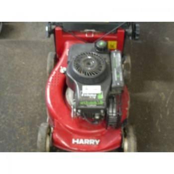 TONDEUSE HARRY 313-QFA-0501 (4)